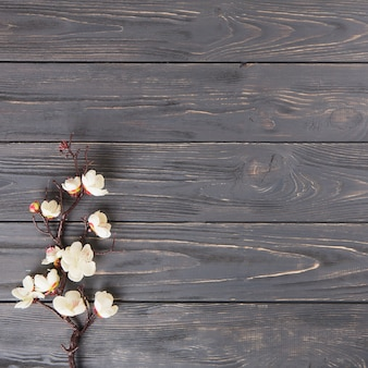 Galho de árvore com flores brancas na mesa de madeira