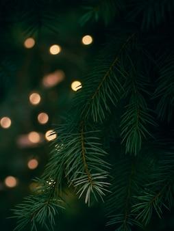 Galho de árvore de natal verde e luzes amarelas