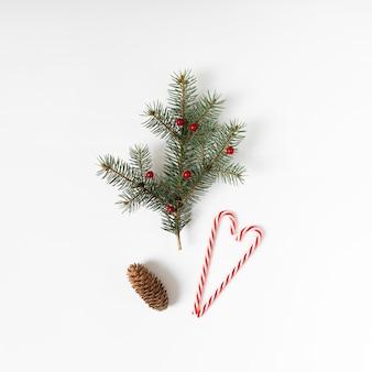 Galho de árvore do abeto com bastão de doces e cone