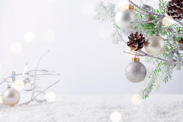 Galho de árvore do abeto com cones cobertos de neve em fundo branco