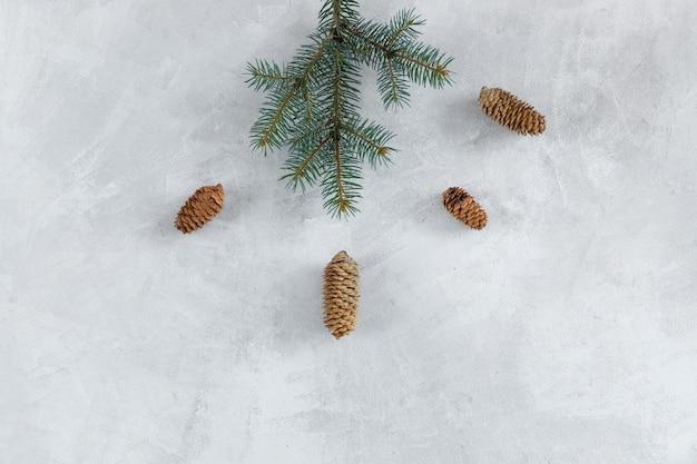 Galho de árvore do abeto com cones na mesa cinza