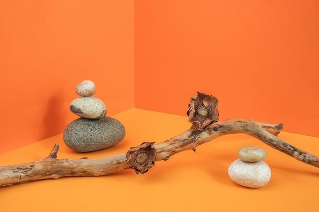 Galho de árvore, flores secas e pedras