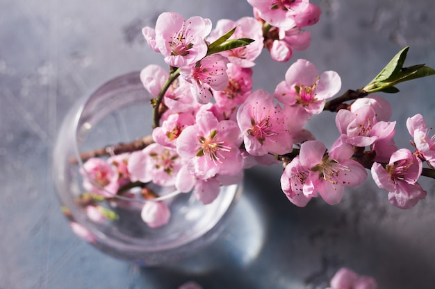 Galho de flor de cerejeira rosa no vaso de vidro