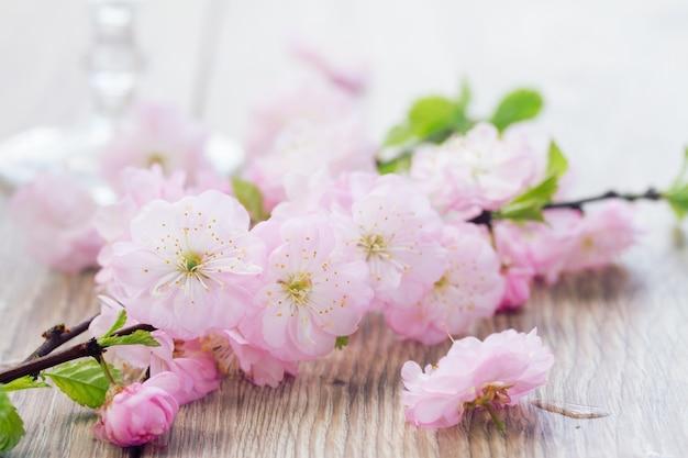 Galho de flores de cerejeira rosa na mesa de madeira