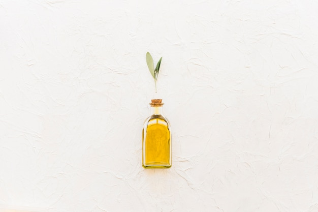 Galho de oliveira sobre a garrafa de óleo fechada sobre o fundo branco
