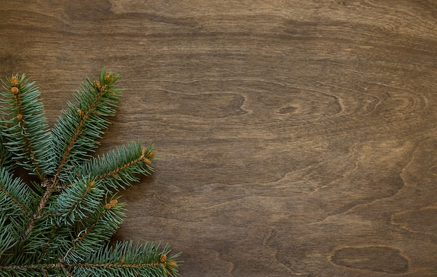 Galho de pinheiro de natal em um fundo de madeira
