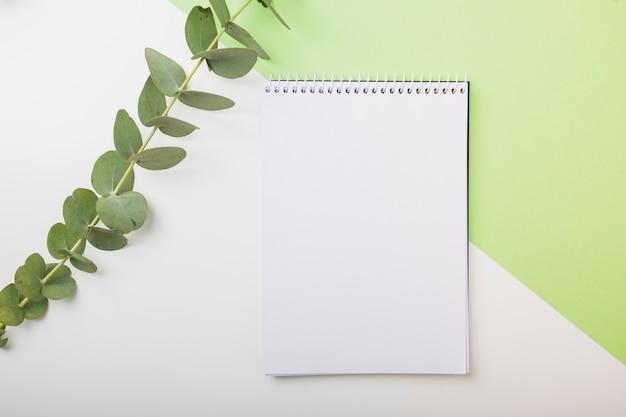 Galho fresco e caderno espiral em branco no pano de fundo branco e verde dual