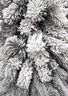 Galhos brancos de uma árvore de natal salpicados de neve branca