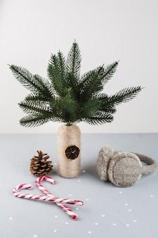 Galhos de árvore do abeto em pequeno vaso com bastões de doces