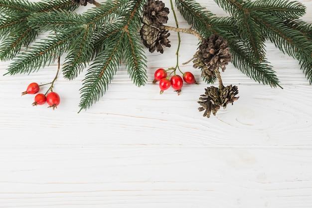 Galhos de árvore do abeto verde com pequenos cones na mesa