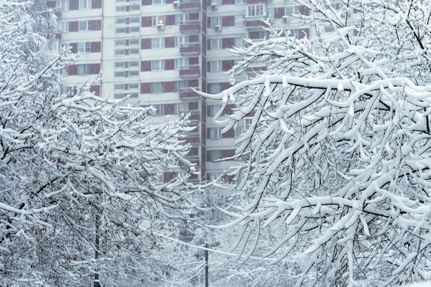 Galhos de árvores cobertos de neve após uma forte nevasca com janelas de construção de casas ao fundo em moscou