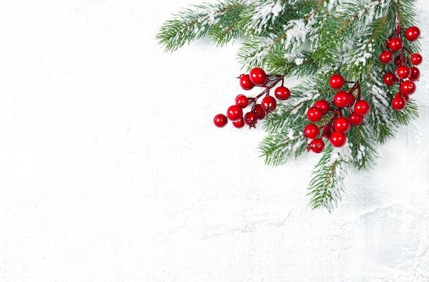 Galhos de árvores de natal com bagas vermelhas em fundo branco. decoração de festas