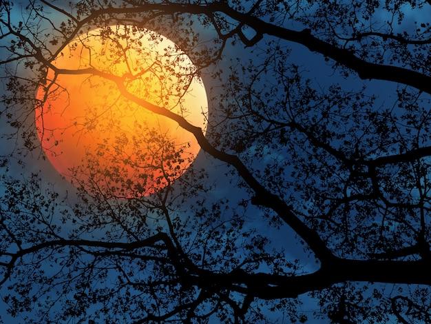 Galhos de árvores de silhueta para o fundo de halloween