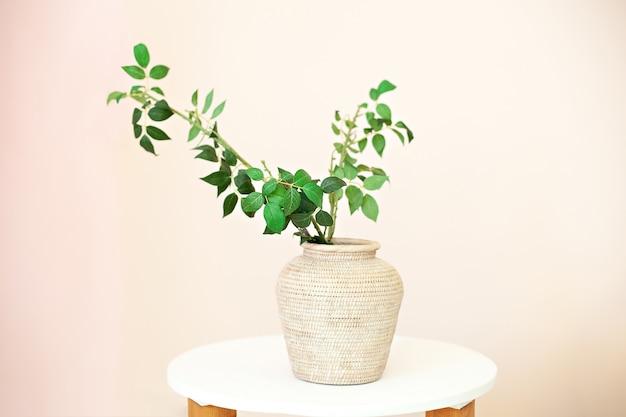 Galhos de eucalipto com folhas frescas em vasos em cima da mesa. flores em um vaso em casa.