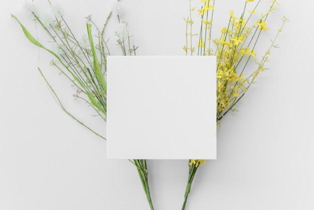 Galhos de plantas brilhantes e papel