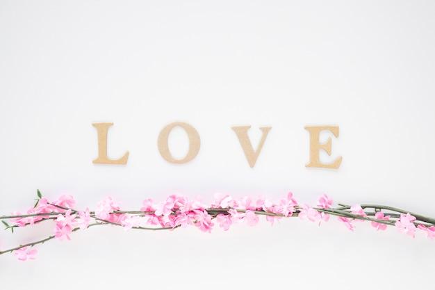 Galhos florescendo perto de escrever amor