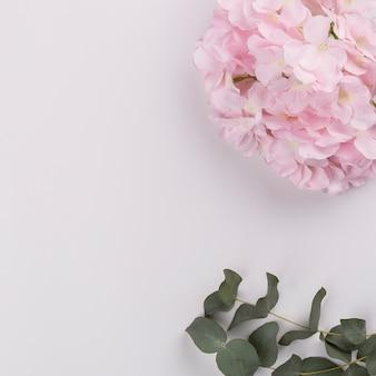Galhos perto de flores fofos