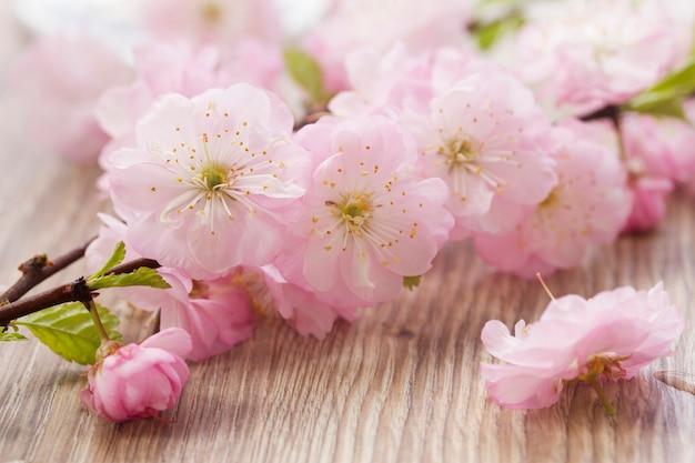 Galhos rosa com flores na mesa de madeira