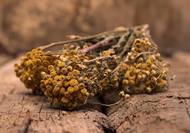 Galhos secos de tanásia em um fundo de madeira