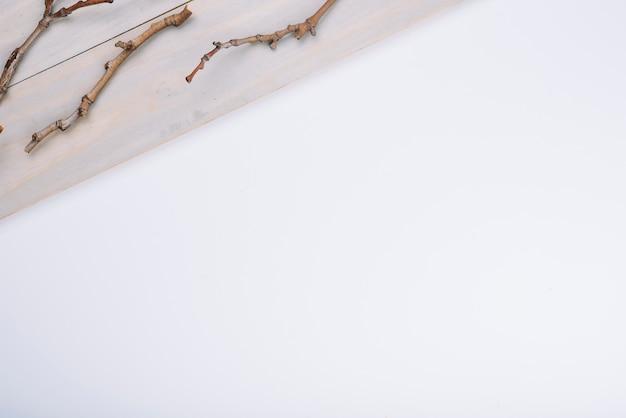 Galhos secos na placa de madeira