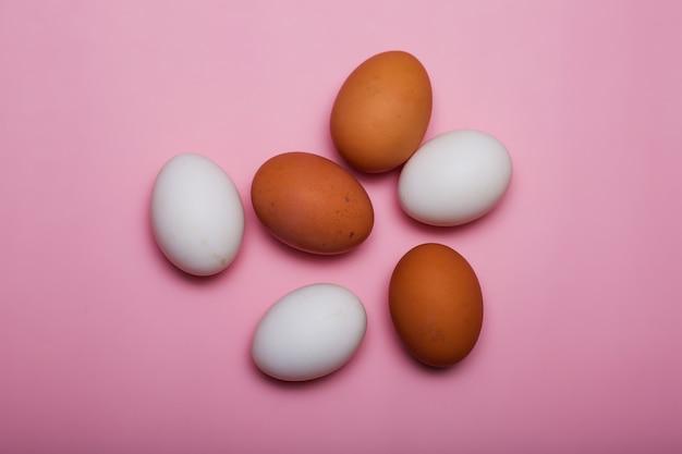 Galinha cultivando ovos brancos e marrons em uma rosa