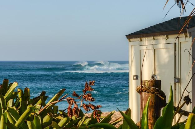 Galpão de armazenamento de salva-vidas e folhagem com o surf alta de sunset beach, havaí no backg