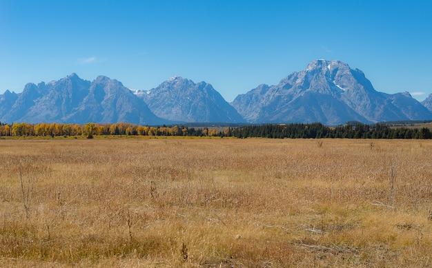 Gama teton, parque nacional grand teton