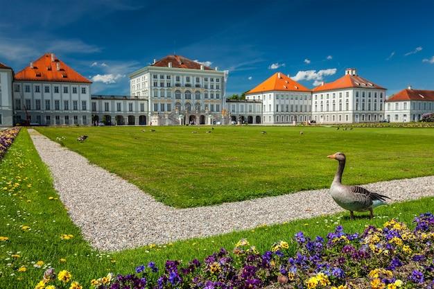Ganso no jardim em frente ao palácio nymphenburg em munich bavaria alemanha