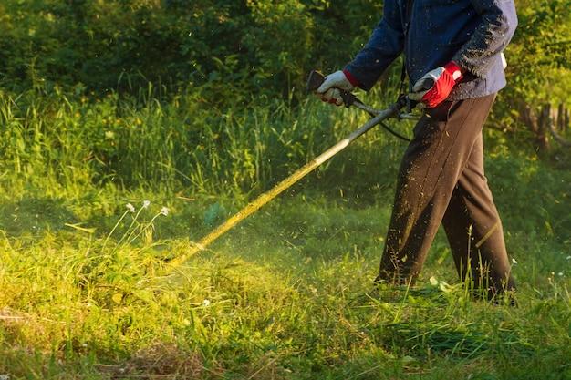 Gardener corta um gramado verde com um cortador de grama portátil.