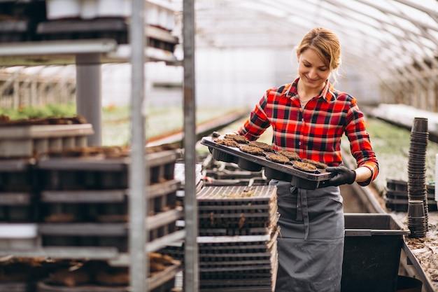 Gardiner mulher em uma estufa
