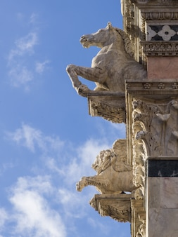 Gárgulas na fachada da catedral de siena, siena, toscana, itália