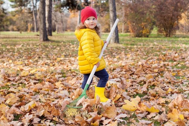 Garota ajuntando pilha de folhas de bordo de outono no quintal