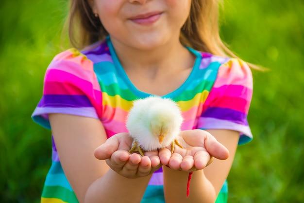 Garota de criança com frango na mão