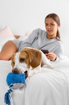 Garota de tiro médio com cachorro
