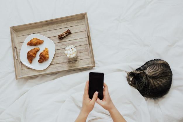 Garota está tomando café da manhã na cama e usando o telefone dele com um lindo gato listrado deitado por perto