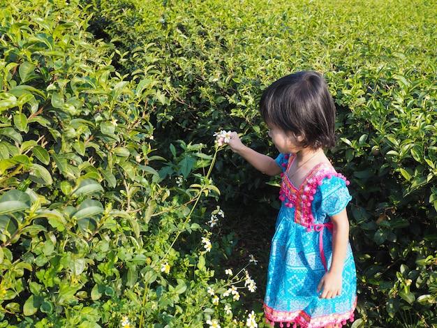 Garota feliz jogando e colhendo flores brancas no campo de chá.