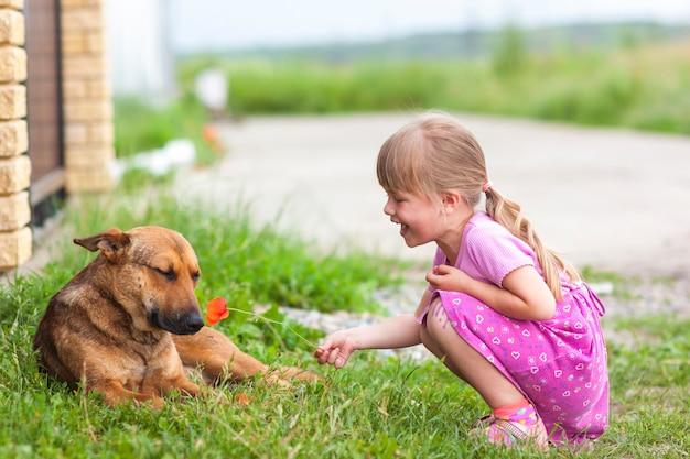 Garota feliz mostra flor vermelha para um cachorro