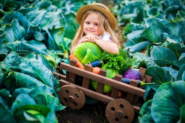 Garota feliz no chapéu de palha no campo de repolho com cesta de legumes