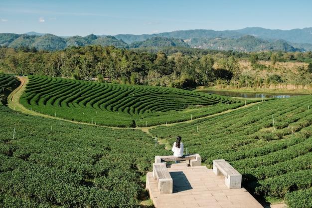 Garota solitária no campo de chá agrícola