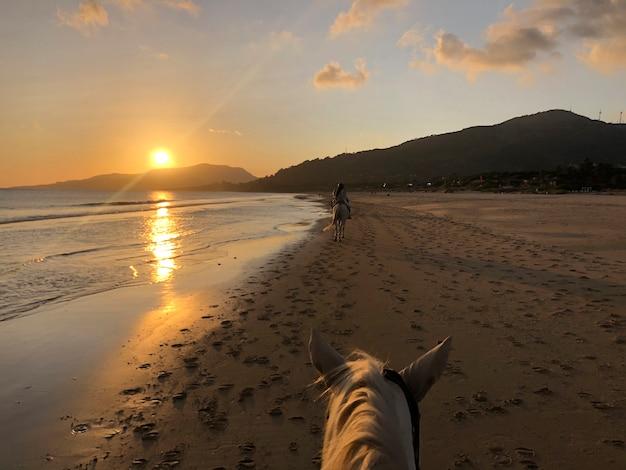 Garotas andando a cavalo ao pôr do sol na praia