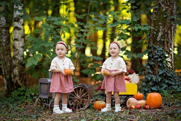Garotinhas gêmeas ao lado do trator com um carrinho com abóboras