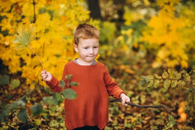 Garotinho em um parque de outono cheio de folhas douradas