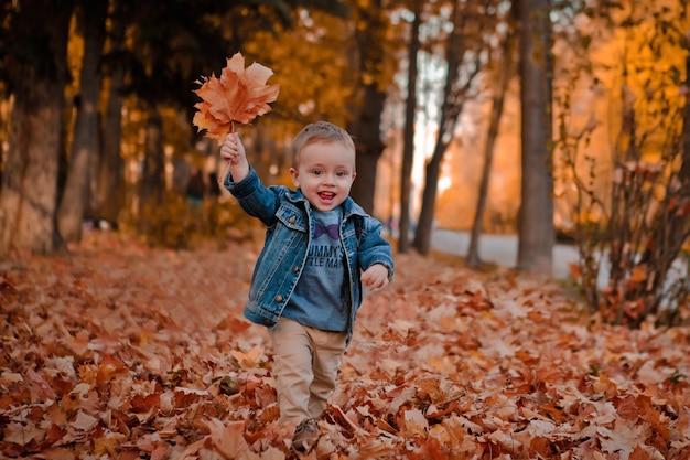 Garotinho feliz com casaco azul brincando com folhas no fundo dourado do parque outono