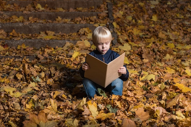 Garotinho lê um livro na floresta sentado nas folhas de outono. livro infantil fascinante.