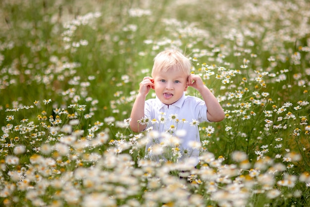 Garotinho no campo da margarida com um buquê de flores silvestres