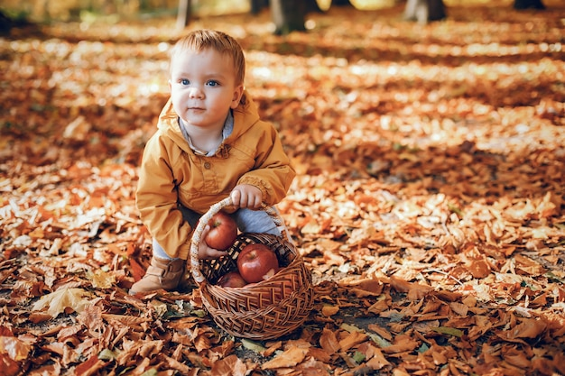 Garotinho sentado em um parque de outono