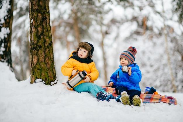Garotinhos fazem piquenique na floresta de inverno e compartilham chá da garrafa térmica.