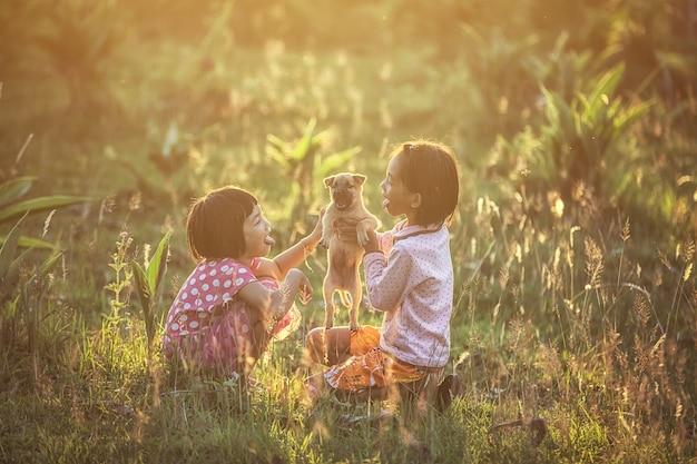 Garoto asiático meninas brincando com o cão no parque sob a luz solar