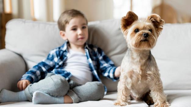 Garoto feliz em casa brincando com o cachorro