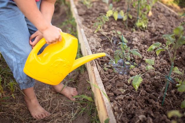 Garoto garota regar mudas de jardim, horta